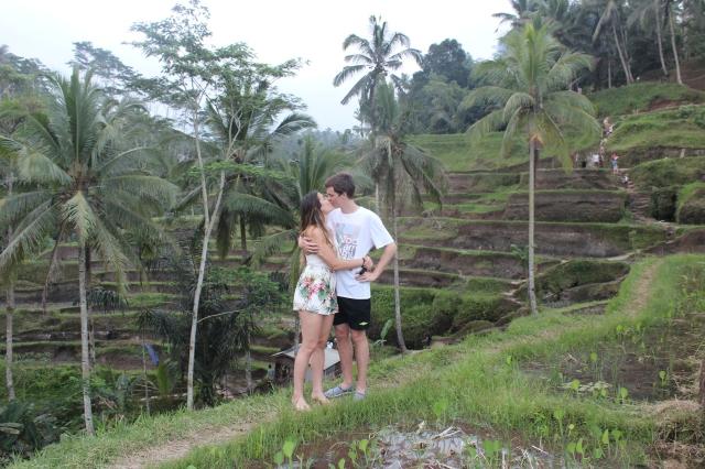 Kiss rice plantasje
